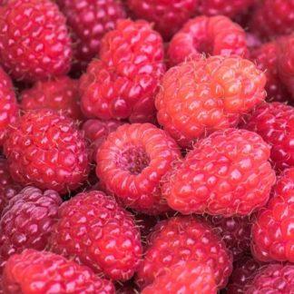 Fruits d'ici